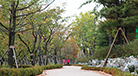 Hwanggeumnae Neighborhood Park
