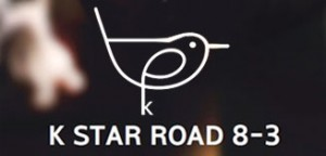 K STAR Road to be Formed in Gangnam