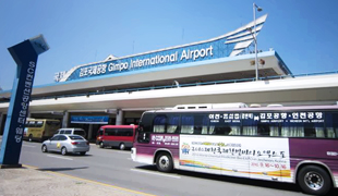 Airport Limousine Buses