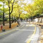 basic_autumn_e_2 (1)