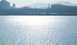 Hangang (River) silver