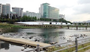 Salgojidari Bridge
