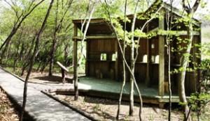 Gildong Ecology Park