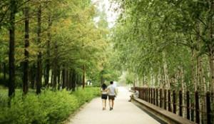 Seonyudo Park