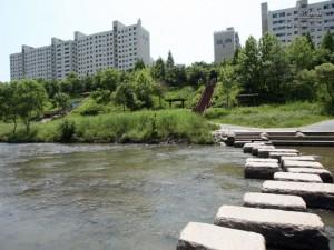 Yangjaecheon (Stream) and Tancheon (Stream)