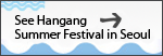 See Hangang Summer Festival in Seoul