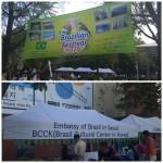 Brazilian Festival 2014