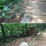 [Mayor Park Won Soon's Hope Journal 517] On the preservation of historical tombs