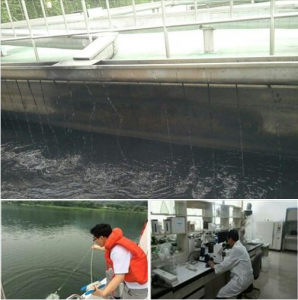 [Mayor Park Won Soon's Hope Journal 522] Algal Bloom Warning