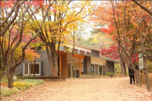 [Mayor Park Won Soon's Hope Journal 560] Library in Samcheong Park