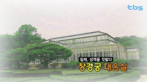 The Daeonsi l (large greenhouse) in Changgyeonggung Palace, a sacrosanct place that was violated by the Japanese