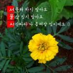 Seoul_Typography_Contest_ds9537@naver.com_3