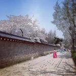 Seoulove44