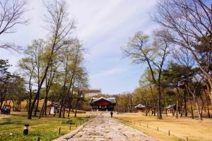 Seoul: Seonjeongneung Royal Tomb