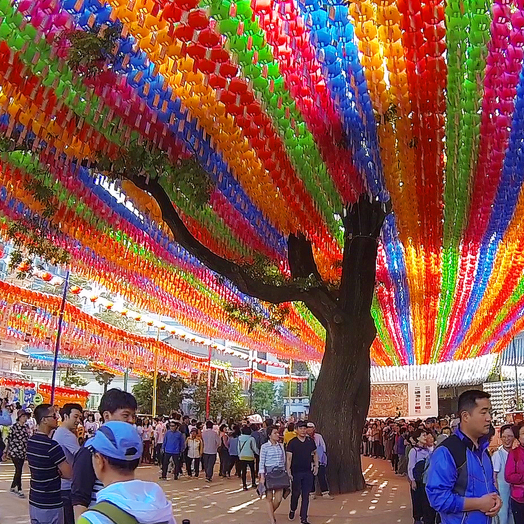 Lotus Lantern Festival at Jogyesa Temple (조계사 연등회)