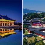 Gyeongbokgung & Changgyeonggung Palace offering late hours and free admission
