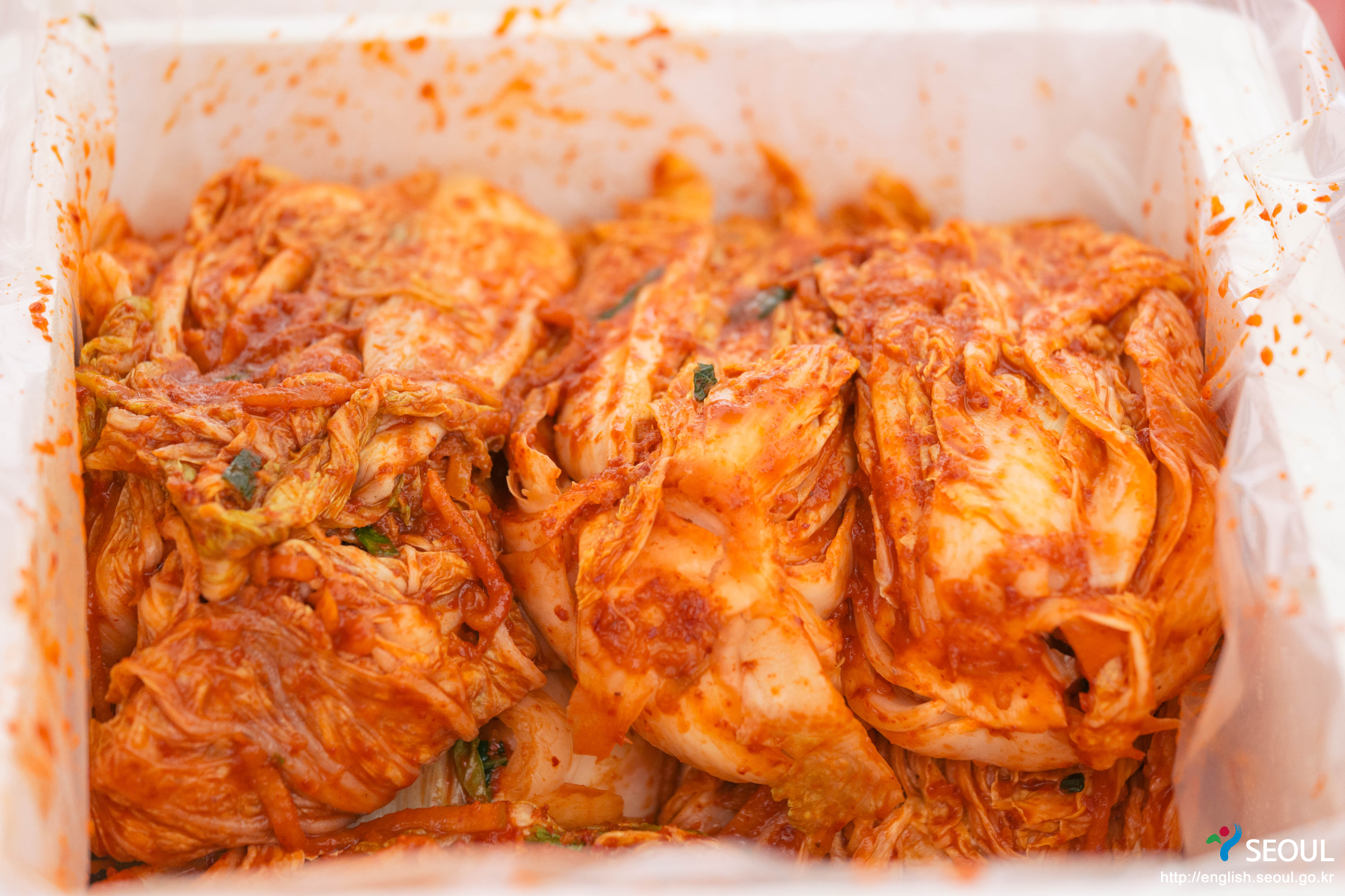kimchi_08