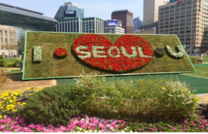 Enjoy Beautiful Springtime at Seoul City Hall!