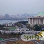 Four Seasons of Seoul