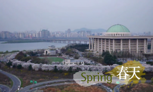 Four Seasons of Seoul