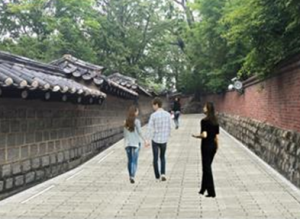 2017 Opening of the Previously Closed Deoksugung Stonewall Walkway 100m