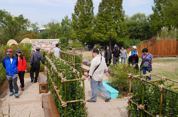 [Silver Prize] Dreamy Garden Fence