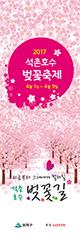 2017 Seokchon Lake Cherry Blossom Festival