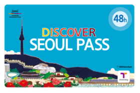 48 hour pass (55,000 won)