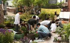 Citizens' initiative to plant trees and flowers