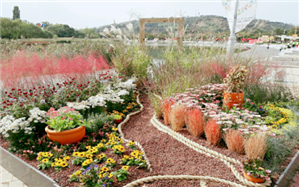 Garden on Display