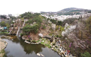 Nice Forests and Valleys in Seoul