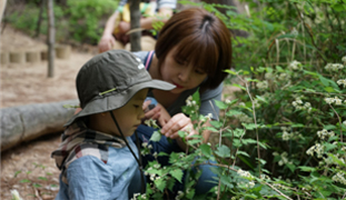 Infant Forest Activities at Namsan Park