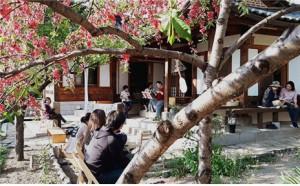 Enjoy Bukchon Culture Day in April!