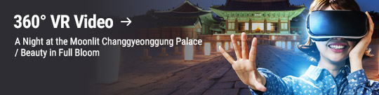 360° VR Video: A Night at the Moonlit Changgyeonggung Palace / Beauty in Full Bloom