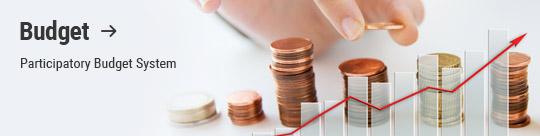 Budget: Participatory Budget System