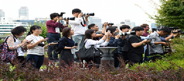 ≪Photographing of Seoul City Hall Roof Garden≫