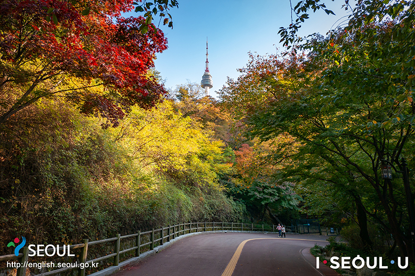 Autumn scene in Seoul, Namsan Park