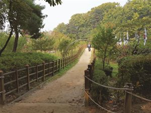 Seoul Explores 150 Themed Walking Trails over Four Years, Published as Four-Volume Book
