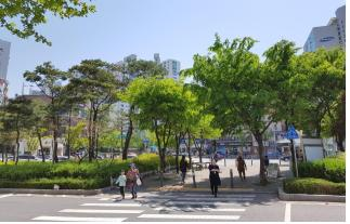 Shade trees planted on the traffic island at the northern extremity of Olympicdaegyo Bridge, Gwangjin-gu