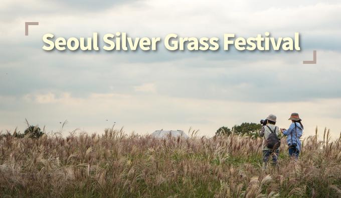 Seoul Sliver Grass Festival
