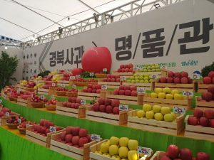 Opening of Gyeongbuk Apple Festival