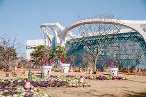 """Seoul Botanic Park Winter Garden Festival """"European Christmas in Seoul"""""""