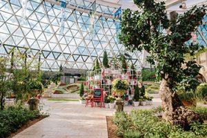 Seoul Botanic Park Winter Garden Festival