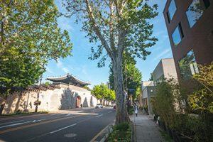 Seochon Village