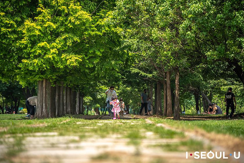 seoul-forest-atelier-street-4