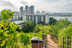 Cheongdam Reservoir Park