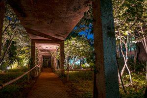 Seonyudo Park at Night