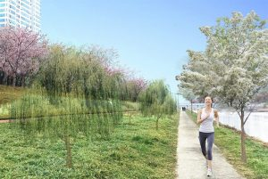 "Promoting the Creation of ""Urban Wind Path Forests"" that Send Clean and Cool Air from the Forest to the City"
