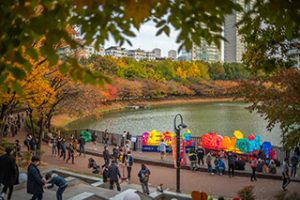 2020 Seokchon Lake Fall Foliage Festival
