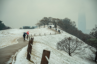 Winterscape of Olympic Park